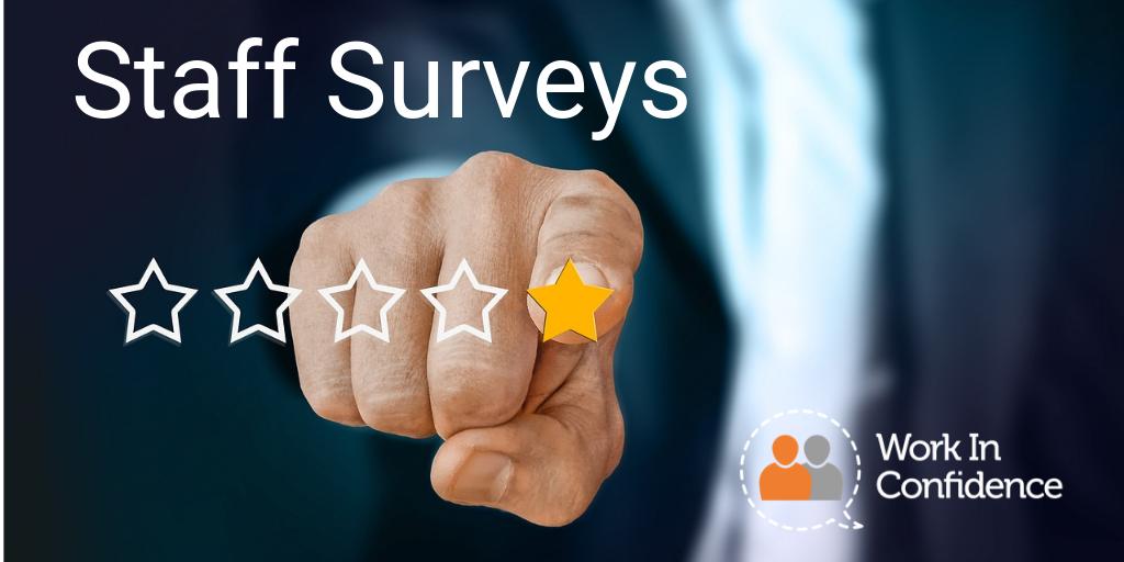 Key Staff Survey Question Topics